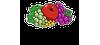 24088 logo 100x45 stellen kombi