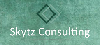 Skytz Consulting